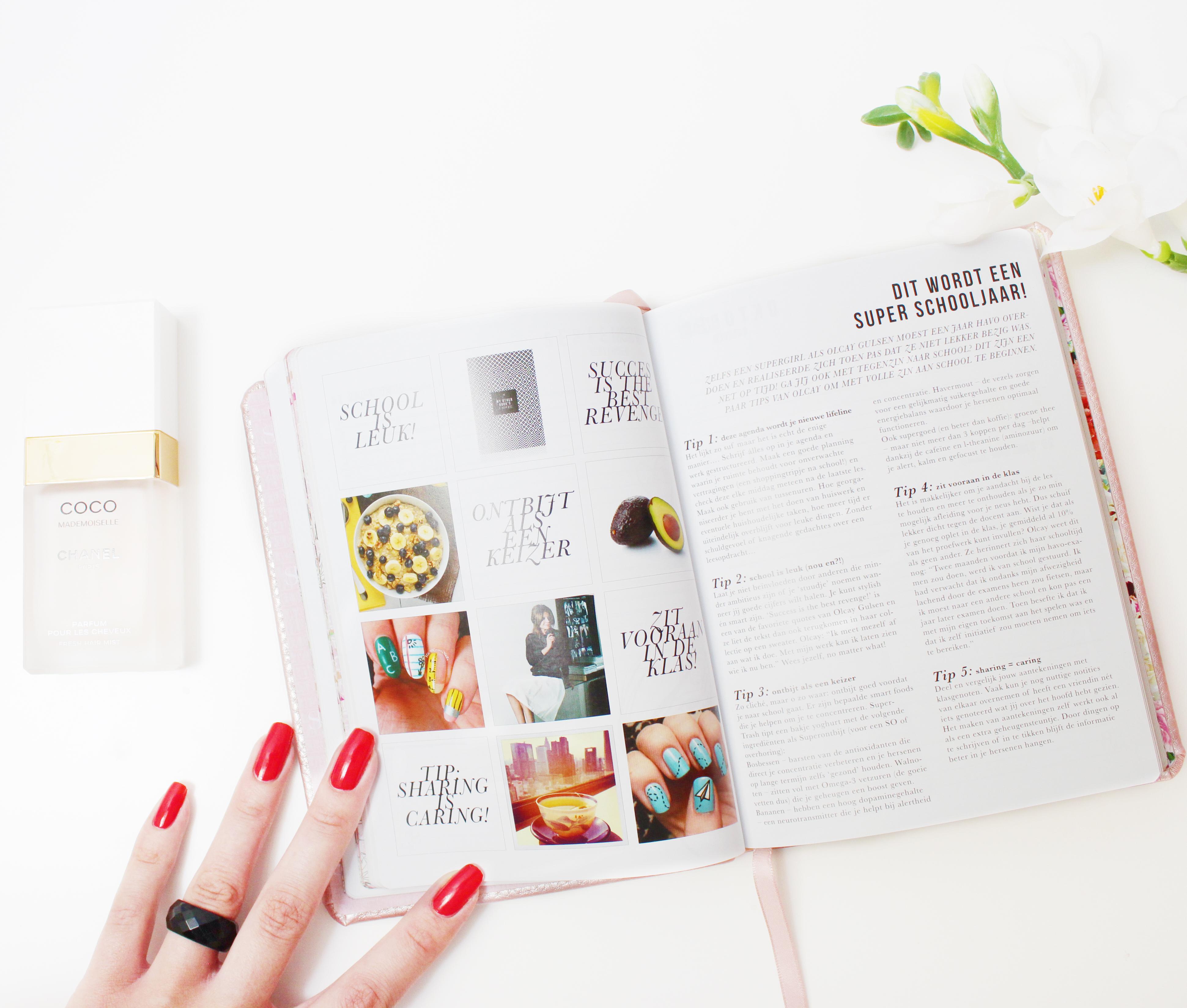 SuperTrash school agenda schoolagenda 2015-2016 ST Girls roze champagne nieuw review tip plannen lifestyle by linda