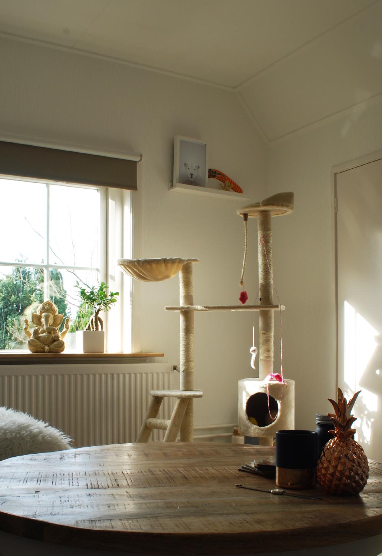 Keukenwerkblad hout evt leng - Deco grote woonkamer ...