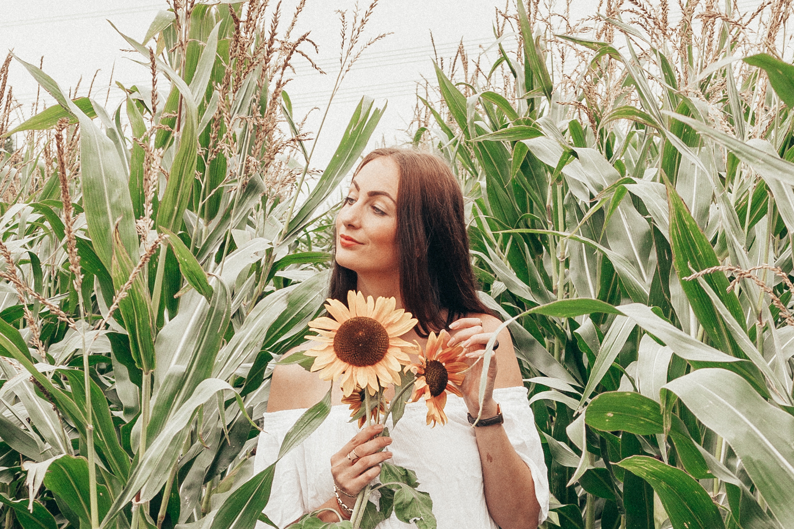 corn field Lifestyle by Linda blog onderhoud